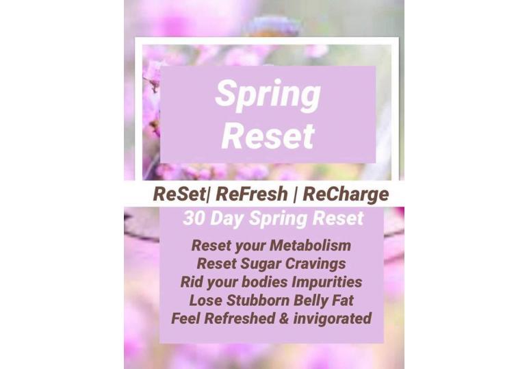 Spring Reset image